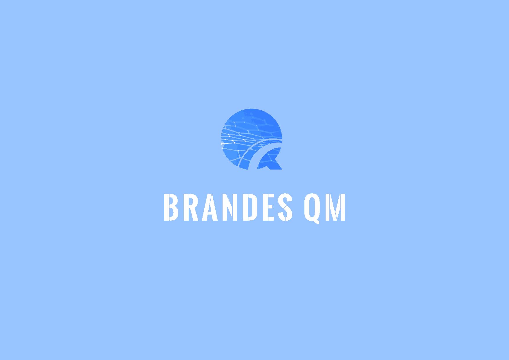 brandes-qm.de